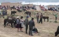 La Feria de la Tablada, la feria que revitaliza el trueque