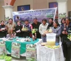 El Molino realizará la Feria de la Manzana