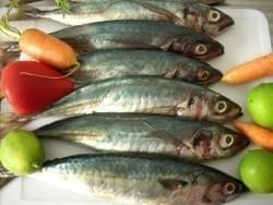 Consejos para escoger los pescados más frescos